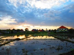 Canguu's skyline.