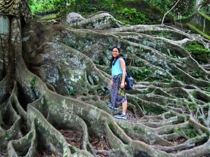 Nice little tree / Es el arbolitoo.