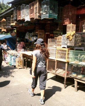 Walking down the bird market. // Paseando por el mercado pajaril.