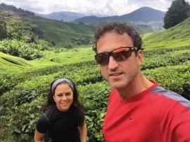 Us and the Tea. // Nosotros y el té.