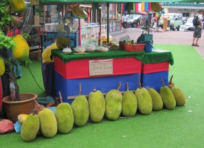 Speaking of fruits, here the huge Jackfruit. // Y hablando de frutas, aqui el pequeño Jackfruit.