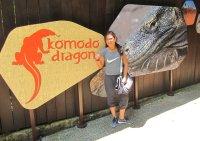 More Komodo dragos, also here. // Aquí también, unos dragoncitos de Komodo.