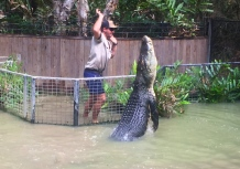 See you later aligator. // No somos cocodrilo, señor caimán.