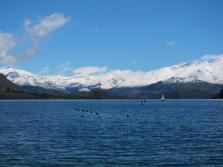 Wanaka lake, impressive. // El lago de Wanaka, naka la pirinaka.