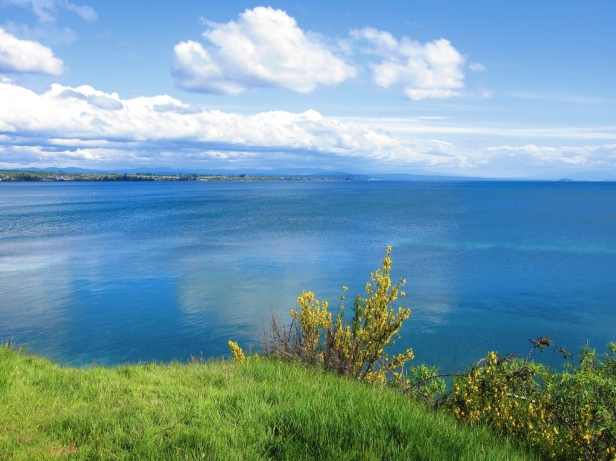 Landscape_Rotorua_IMG_2378