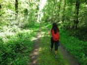 Walk_Hanmer_IMG_2504