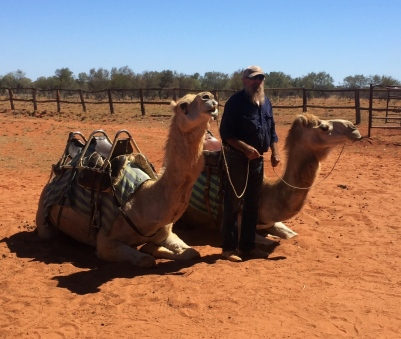 ... and to ride camels. // ... y para montar camellos!