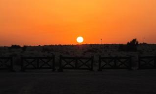 Desert sun, just like all other suns. // El sol del desierto (igualito al resto de soles).