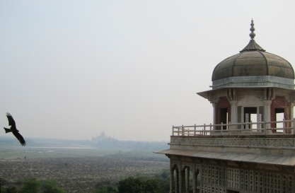 First glimpse of the Taj, from the Fort. // Primera vista del Taj, desde el fuerte.