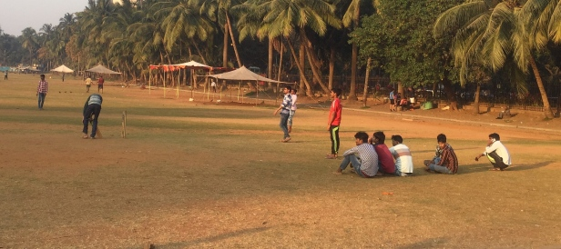 Cricket being played all over town. // Todo el mundo jugando cricket.