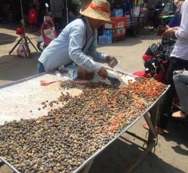 Fresh shellfish, waiting for you all day under the 40° sun. // Las ricas conchitas, fresquesitas todo el día bajo el sol a 40°.
