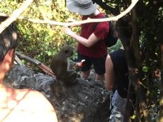 And the one who started it all. // Ese fue el infeliche que empezó todo el ataque macaco.