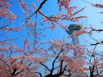 Goryokaku tower. // Torre de Goryokaku.