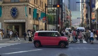 Pink invades the streets. // El rosado invade las calles.