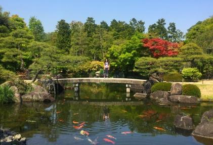 Including the typical carp in the pond. // Incluyendo los clásicos pececillos en la laguna.