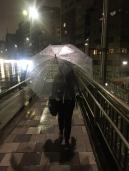 A real Japanese will have the plastic umbrella. // Todo japonés real tendrá uno de estos paraguas de plástico.